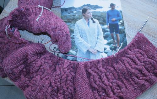 Oceana en rose, début de l'ouvrage